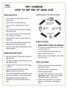 How to Get Rid of Head Lice_Page_1